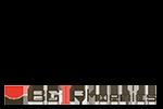 Logo BG Phoenics