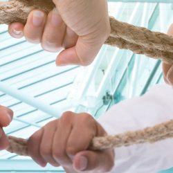 Hände ziehen am kreisrunden Strang